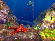 3D Ocean Fish screensaver screenshot